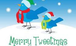 Just wanted to wish everyone a great Holiday Season and Happy New Year for you and your families Thank you Central Aviary, Central Pet and Parrot Family