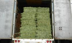 Top quality small square horse hay for first cut mixed hay, second cut timothy or second cut alfalfa. All hay is shedded and on plastic,so there is no bottoms, moldy hay or bleached bales. We help load and don't mind evening or Saturday pickups. We can