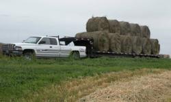 150 soft care  alfalfa/grass bales. 750 lb. No rain. Located near Dafoe. $25.00/bale. Can haul 11 at a time.