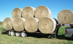 Have all kind of hay available.Some mixed alfalfa/grass and some straight grass.Some NO rain and some with one shower.All comes in round bales.Can deliver.Prices sarting at $55.00 a round bale. call 403 356 0200