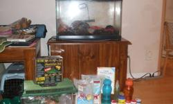 Two crabs with everything you need! 10 gallon size glass tank with heater, medium travel cage, extra shells,food and food and water dishes plus different accessories. How to care for crabs book included.