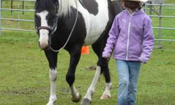 """Looking for """"horsegirls"""" to ride at Wildhorse Mountain Ranch One time offer for an awesome riding camp, only $285.00 + GST Includes awesome, thinking horses, trained in many disciplines, accommodations in the """"Cowgirl Bunkhouse"""", home cooked meals, LOTS"""