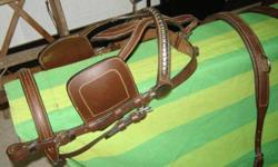 Harness Excellent Condition. Contact Rob 604 628 5706