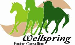 4 week Programs to learn the Basics about Horses! No previous horse experience required. All our teaching is done from the ground, although the opportunity to expand into introductory riding can be accommodated at client request.   Lessons topics are run