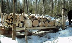 I am looking to see if there is enough interest on a horse logging and Technic logging coarse,training would involve saw sharpening,saw matinance and safty, tree felling log bucking, site setup ,landings and driving horses,pair,s and single deadman