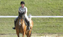 16.2hh bay TB for part board or full lease ( in barn lease only) located just east of London 15 mins. Indoor arena, full service barn, lessons and trailering to shows. This gelding is 8 yrs old has done some showing placed well, very quiet and sound