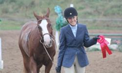 """""""Lily of the Valley"""" is a beautiful 7 year old 14hh Quarter Horse. She is passported. Lily is into her second year of showing hunter/jumper, she has won plenty of ribbons from this show season in the challenge series and is eager to show more. Great medal"""