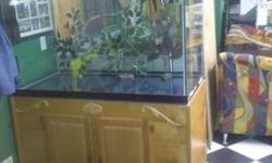 Large fish tank / Aquarium in grate condition built in power bar, 2'' steel stand wrapped in oak call for more info thanks 416.995.3640 measurements are 4 feet long X 2 wide X 31'' high