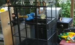 HI I WANT TO SELL MY  USED LARGE PARROT CAGE. THIS CAGE VERY STRONG AND HIGH QUALITY. BRAND NEW CAGE OVER $1000. BUT I M SELLING MY USED $550 OR BEST OFFER. GOOD SIZE FOR PAIR OF MACAWS OR AFRICAN GRAY OR ANY OTHER BIG PARROT. THIS CAGE COME WITH SOME