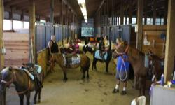 Lease ... We have many ponies suitable for beginner riders or confidence builders for the little ones. these ponies have been there and seen it all... Well behaved no kicking biting or bucking. We lease for free at your approved location or 100.00 per