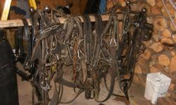 Selling Double set of  Leather draft harness   Great condition ,  equipped with Full martingales, Bridles, lots of speckles