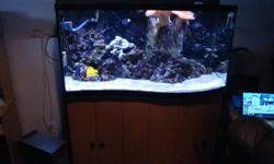 95 GALLON WAVE FRONT SALTWATER AQUARIUM 25 GALLON SUMP FILTER INCLUDES THE FOLLOWING: AIR PUMP AND BUBBLER - 20.00 60 POUNDS LIVE ROCK - 3 YEARS SEASONED 60 POUNDS LIVE SAND - sand and rock - 250.00 ALL ROCKS HAVE SOME CORALS ON THEM ITS A GREAT DEAL FULL