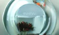 "SALE STARTS FRIDAY DEC 16TH TO SUNDAY DEC 18TH MARINA COOL 7 AQUARIUM $24.99 ULA LOOP FISH BOWL $9.99 ALL AQUATIC PLANTS $2.99 A POT Alternanthera bettzickiana ""Red"" Cabomba aquatica Cryptocoryne becketii Cryptocoryne ciliata Cryptocoryne cordata"