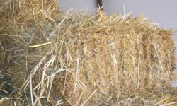 Small square bales of oat straw for sale. $4 each. No rain and stored inside building.Can deliver for extra charge.