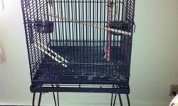 they are one and ahalf year they are handtem friendly they come with large cage with stand and food and lots of toys