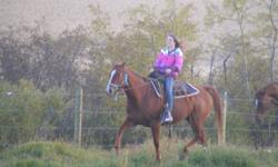 5 yr old QH mare for sale. Stands approx 15.2H. Not reg, dam is Crimson Easy Shadow, and sire is Skip Van Otto. Green broke, had 30 days put on her last Sept (2010), she was rode steady last fall (even a few rides by my daughter), and about a handful of