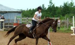 Aero is an exceptionally athletic mare.  She is 8years.  Sound with Exceptional ground manners.  Built for speed.  We are amateurs at training for games.  Allison is riding her  in SSide on August 6th.  Allison has only competed once on her.  Wears a