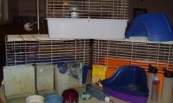 Getting rid of rabbits, family allergy.   1 male purebred Netherland Dwarf, approx. 1 year old. (1st pictured) 1 female Rex mix, approx. 3 years old. (2nd pictured) 1 female baby from the two above, 7 weeks. (3rd pictured)   The mom has only had one