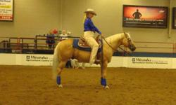 Richland Ranch - Brenda Gauthier - offering quality humane and sensible training for your horse.  Starting a young horse or refining for the show pen and everything in-between.  If you need your horse started or need help with specific issues, I can help