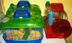 We have a few Roborovski Hamsters for sale as we've decided to stop breeding them.   We have them available either with or without cages. Without cages will include small baggie of food (peanut/nut free due to severe allergies in the household), small