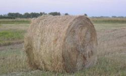 Round Bales for Sale:   4 x 5 soft core, approx 800 lbs each, no rain.  88 bales available, 10 min. from Saskatoon on Hwy 16 W.   Phone (306)280-1627 or (306)934-2086