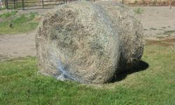 Slow hay feeder hay nets by N.A.G. Bag. (Natural Alternative Grazers) Save up to 60% of hay(proven with scientific studies!) with these nets. Saves money, time and hay! Promote horse health by providing continuous hay (mimics natural grazing) without