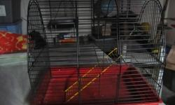 This cage has a two levels and a ladder to climb to the top level. If interested e-mail me.