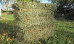 Small square hay bales, located south of Morden/Winkler. Weigh 60 - 70 pounds each--Ditch & meadow hay. No rain & stored in shed  - $2.25 each --Mixture of grasses & small amount of alfalfa. No rain & stored in shed - $3.00 each --2nd cut bales now