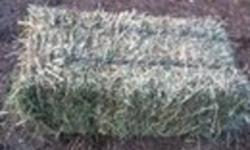 Small Square Hay Bales For Sale. Some are Orchard Grass and Alfalfa Mix. Some are Alfalfa and Orchard Grass Mix. Also Have Some That Are Approx. 40% Alfalfa with Timothy and Grass Mix. -These Are Very Green Nice Bales.Stored in Shed. Prices starting at