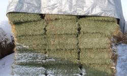 Square hay bales. 2nd cut alfalfa-grass mixture. Excellent quality. $4 a bale. Delivery available. 500 left. Ph.232-4746