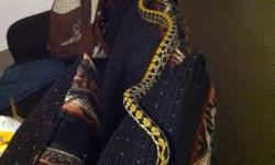 Taiwan beauty rat snake 2 years old eating f/t rats very good eater nice snake looking for a trade or best offer please text or email dont call in class all day 289-880-2409 This ad was posted with the Kijiji Classifieds app.