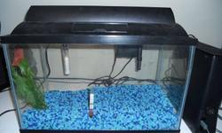 PICK UP ONLY, MISSISSAUGA ROAD AND LAKESHORE!   10 Gallon tank full set up- Tank, Lid, Light, Heater, Filter(5-15), Thermometer, Gravel, Fake plants& Drain hose- 60$    10 gallon tank- 30$ (black& comes with plastic lid)   29/30 gallon screen