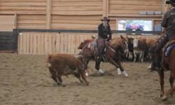 Services & Fees *Colt Starting {up to 4 yo.}.........$725 Month *0ver 4 yo........................................$850 Month *Training on mechanical cow and cattle.......$700 Month     (does NOT include cattle charge)
