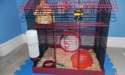 Adorable female teddy bear (long haired) hampster for sale with 3 level cage, wheel, food dish, water bottle and house. She is very sweet & doesn't nip. She is use to being handled alot. We bought her in May. We have 2 of them,  but playing with and