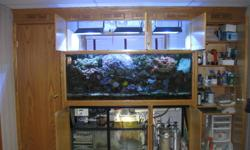 They call it 'The Bomb'.    Why wait months or even years to have the completly set up, cycled and established reef system you have always wanted?   Your dream could be set up and running for you all in a day.     All who have seen this complete reef tank