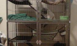 I have two 9 month old  ferrets for sale. They are brothers, both neutered and de-scented. They come with a very large cage and all the accessories (toys, bed, food/ water dishes, shampoo, 3 litter boxes, ect.) I have developed allergy's to them and