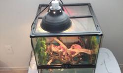 18x18x18 Exo-tara cage both lamps with bulbs extra day time bulb calcium and all that is seen in pictures