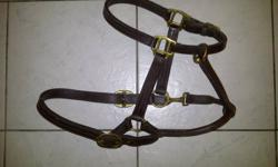 Not using this stuff any more. Maybe someone else could? Leather Halter - $15 Pony Curb Bit & Split Reins - $10 Western bridle w/Split Reins - $15 Green/Mixed Color Soft Felt Pad - $40 Burgundy/Cream Wool Blanket (double fold) & New Nylon Reins - $50 Pick