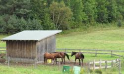 Winding Fences Farm has pasture/outdoor board with run in shelters and heated automatic waterer.   Horses are on large pastures with lots of room to roam.  Regular pasture rotations.  Hay is stored inside and never seen rain.  Hay available 24 hours a day