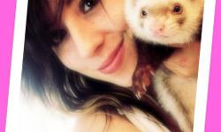 I can't take my little buddy with Montreal with me,Looking for a home with Ferrets already. He's a healthy, docile, happy, chill temperament Ferret. Chocolate brown/white Sable (neutered) (His name is Yopo, but can be changed) Approximately a year old and