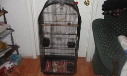 """I have 4 newly born zebra Finches with thier parents for sale thier Big size cage is included in this sale .Cage size is 40""""high 18""""long and 13.5""""deep. babies born on xmas week .Parents finches are also healthy and good looking .One of the babies is rare"""